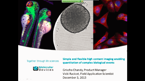 Simple and Flexible High Content Imaging of Complex Biological Events