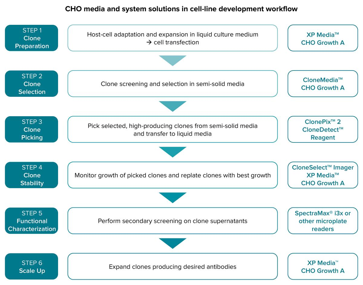 CHO Media and System Solutions in Cell Line Development Workflow