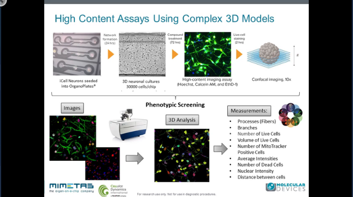 Morphological Characterization of 3D Neuronal Networks in a Microfluidic Platform