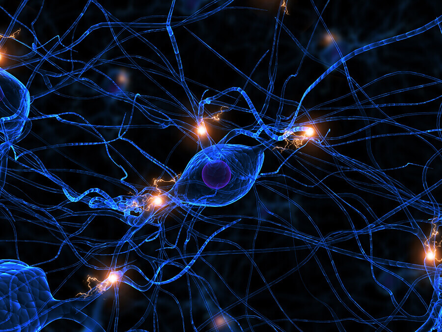Neuronal Assays