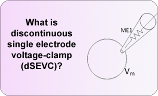 What is discontinuous single electrode voltage-clamp (dSEVC)?