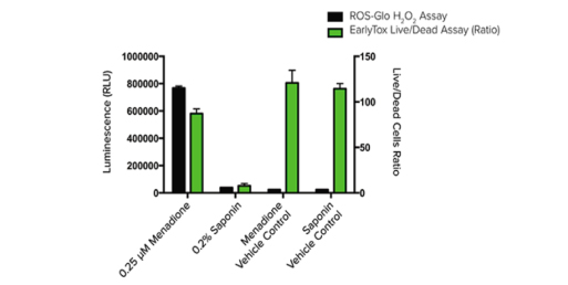 Reactive Oxygen Species (ROS)