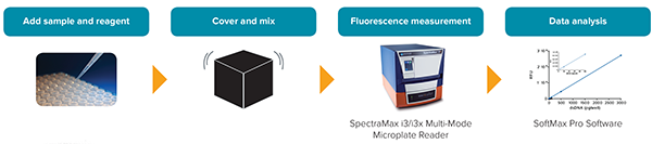 SpectraMax Quant dsDNA Assay kit workflow