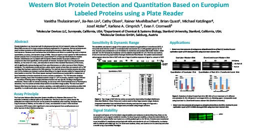 Protein Detection on Europium Labeled Proteins