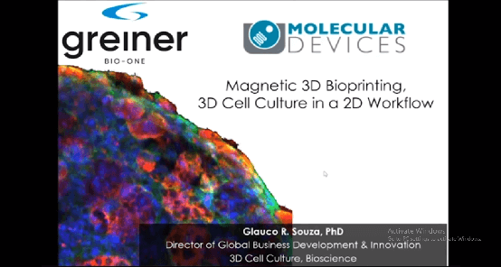Magnetic 3D