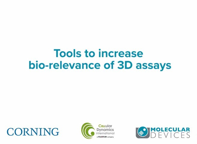 Tools to Increase Bio-Relevance of 3D Assays