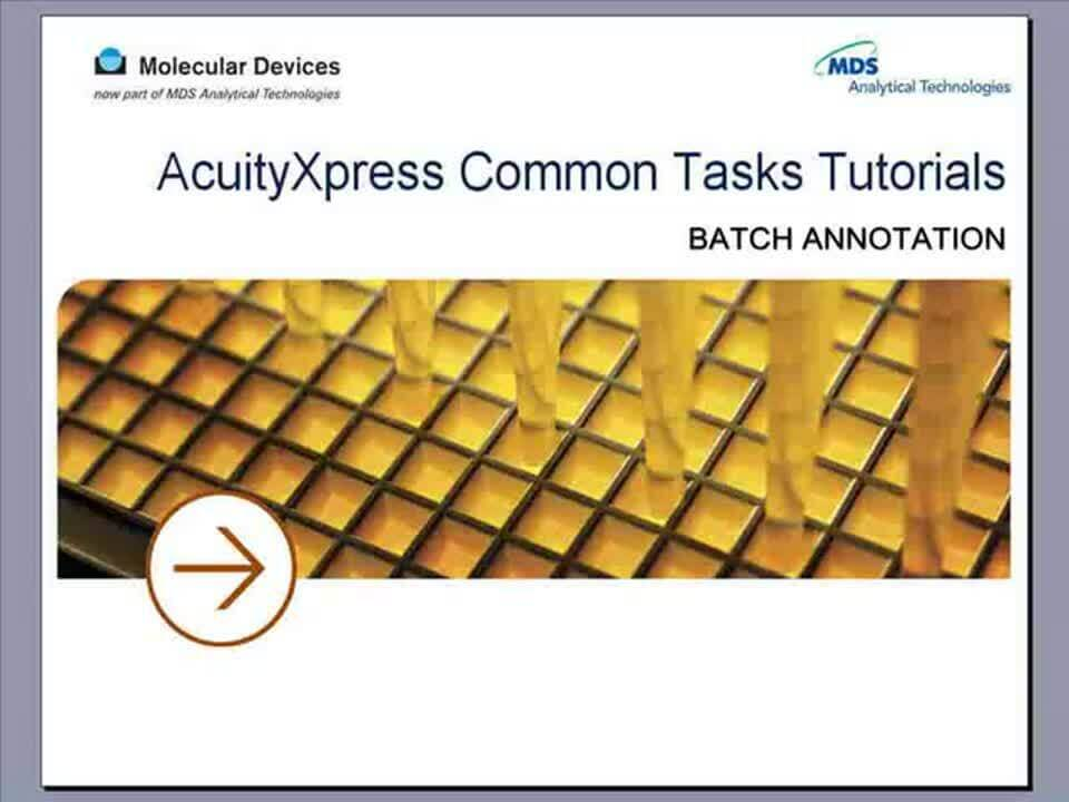 AcuityXpress Batch Annotations