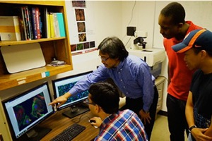 Iowa State Universtiy uses the ImageXpress Widefield System to Repair of Damaged Nervous Systems