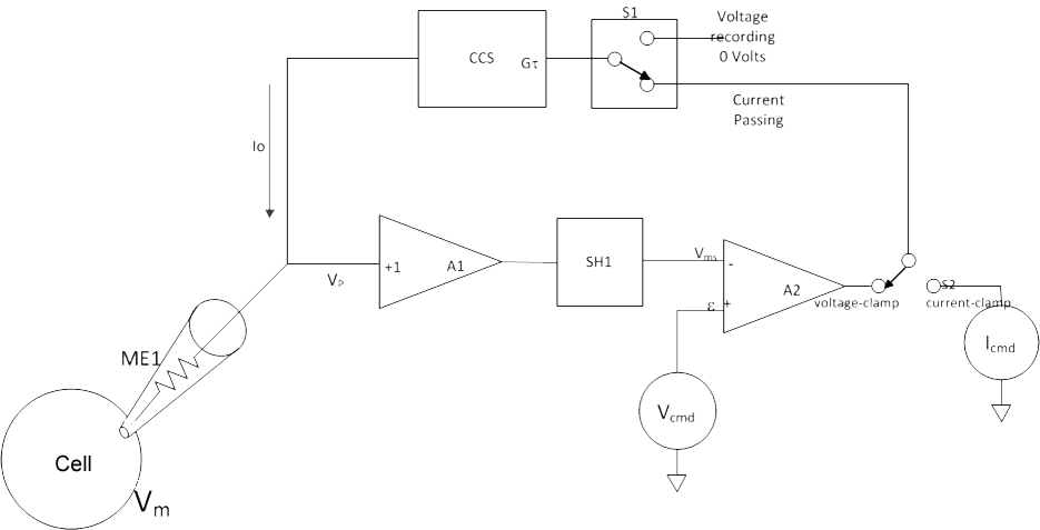 Circuit drawing of a typical discontinuous single-electrode voltage-clamp.