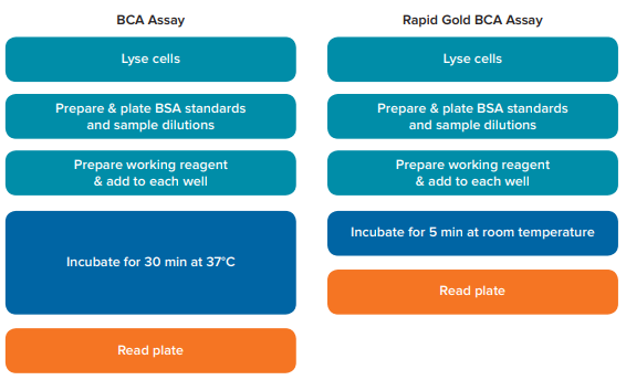 Comparison of assay workflow