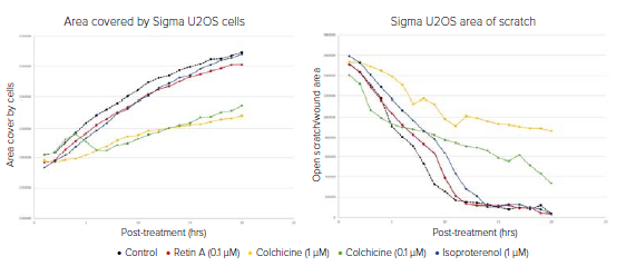 Data plotted of U2OS Cells Migrating