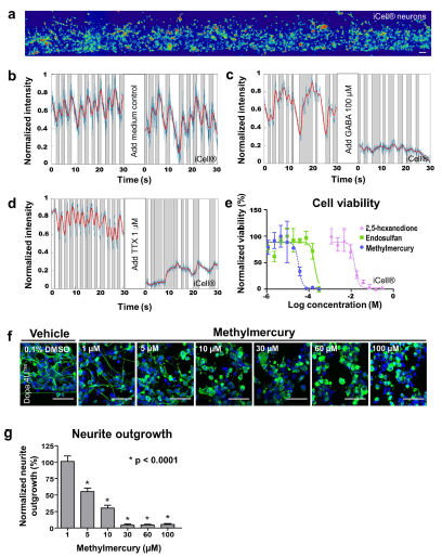 Detection of compound effects on electrophysiology, neurite outgrowth, and cell viability.