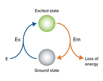 Excitation and short-lived Emission