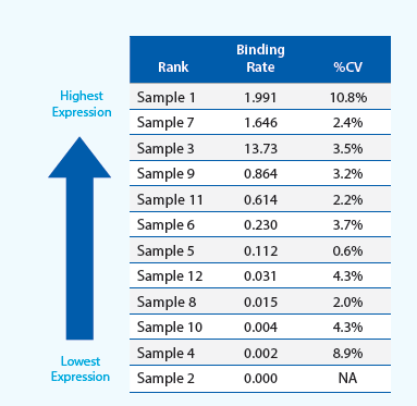 Expression ranking using the calculated binding rates