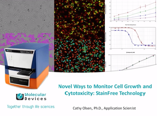 Novel Ways to Monitor Cell Growth and Cytotoxicity: StainFree Technology