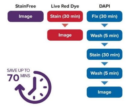 Stainfree cell detection technology