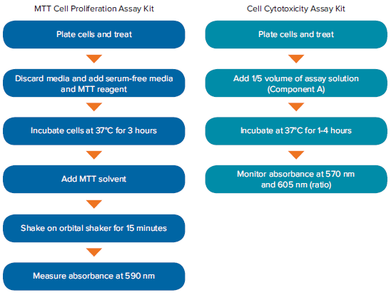 Workflows of the MTT Cell Proliferation and Cell Cytotoxicity