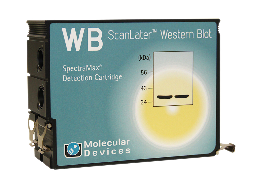 Western Blot Cartridge