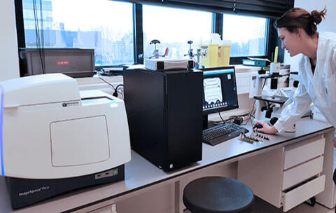 MIMETAS uses the ImageXpress Pico and ImageXpress Micro Confocal systems to develop tissue models for their OrganoPlates®