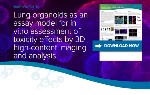 Lung organoids as an assay model for in vitro assessment of toxicity effects by 3D high-content imaging and analysis