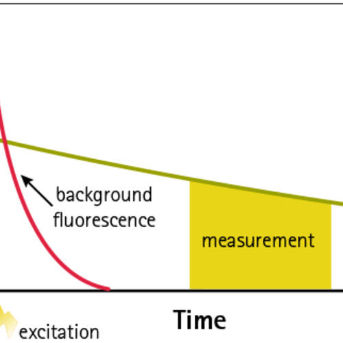 Schematic Representation of Emission Lifetimes that Minimize Background Fluorescence