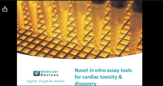 Novel in Vitro Assay Tools for Cardiac Toxicity and Discovery