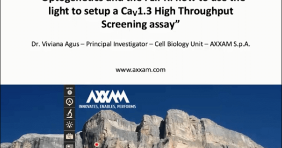 Optogenetics and the FLIPR: Cav1.3 high-throughput screening assay