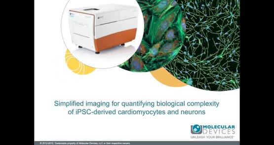 Quantifying Biological Complexity of iPSC-Derived Cardiomyocytes and Neurons