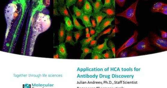 Application of HCA Tools for Antibody Drug Discovery