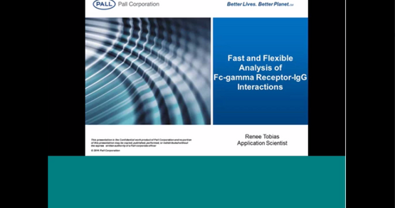 Fast and Flexible Analysis of Fc-Gamma Receptor Binding Interactions