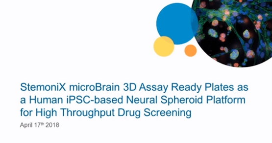 StemoniX microBrain 3D Assay