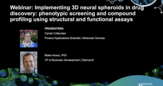 Implementing 3D Neural Spheroids