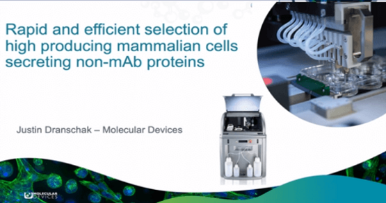 mammalian cells secreting non-mAb proteins workflow