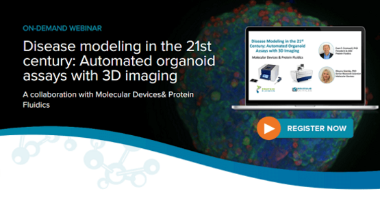 Automated organoid assays with 3D imaging