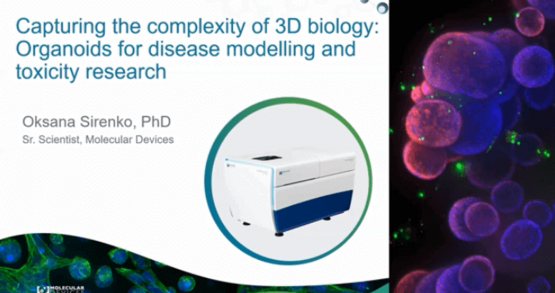 Capturing complexity of 3D biology