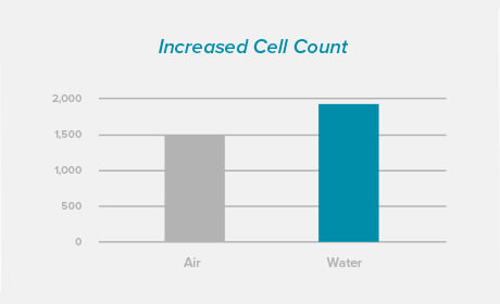 Cell count Graph